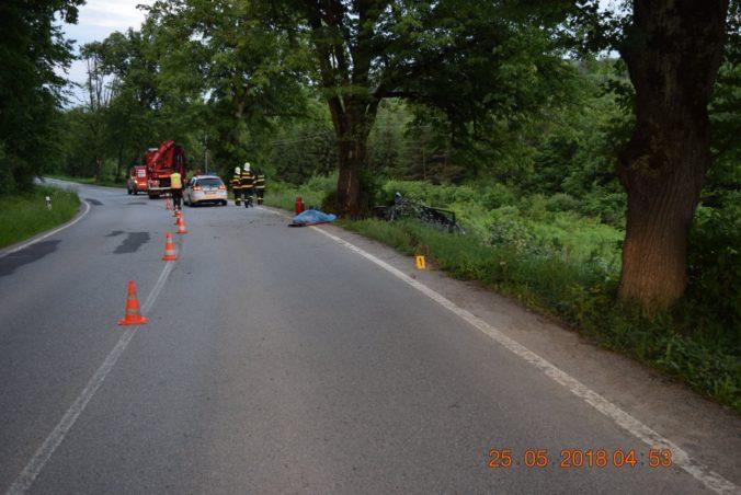 Foto: Vodič Fabie zišiel medzi Prešovom a časťou Cemjata z cesty a narazil do stromu
