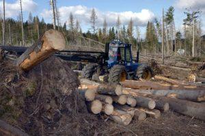 Novela o obnoviteľných zdrojoch obmedzí dotácie na spaľovanie biomasy, je to však proti trendu EÚ