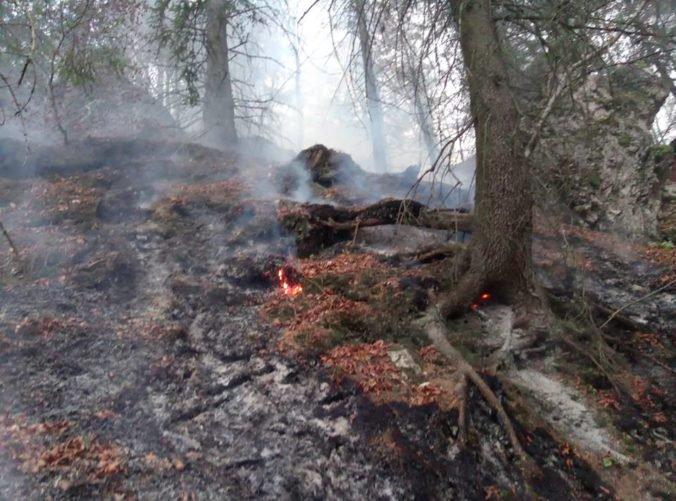 Desiatky hasičov pokračujú v likvidácii požiaru lístia a koreňového systému v Gaderskej doline,
