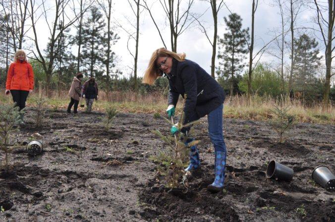 Jedenásť lesníkov podpísalo otvorený list o podozrivých praktikách v hospodárení štátnych lesov