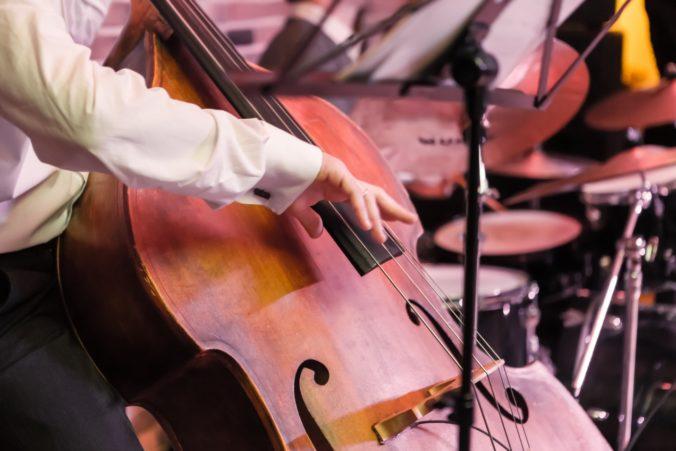 Kontrabasista Patkoló získal v Nemecku ocenenie Opus Klassik za úspechy v klasickej hudbe