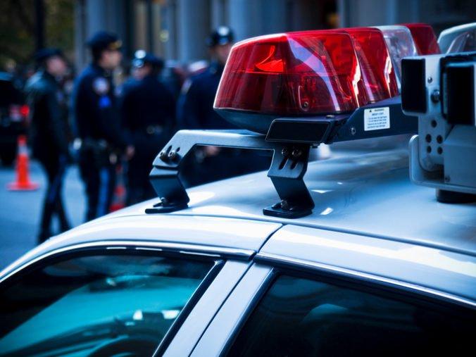 Muž v Kalifornii zastrelil susedkinho psa, prekážalo mu jeho močenie na pozemok a auto
